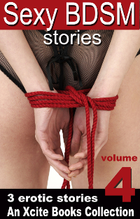 Sexy BDSM Stories Volume Four