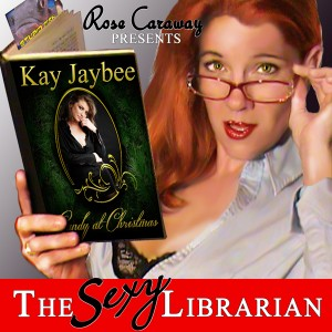 Sexy_Librarian_Cover_600x600