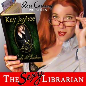 Sexy_Librarian_Cover_600x600