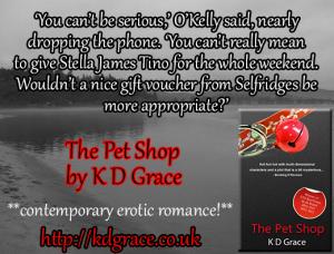 The-Pet-Shop_teaser2